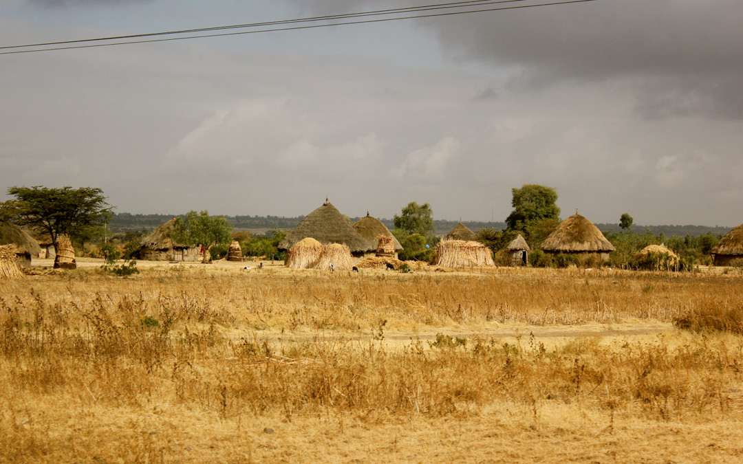 Village in field